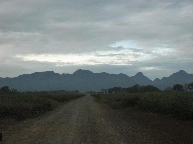 Dahilayan Road