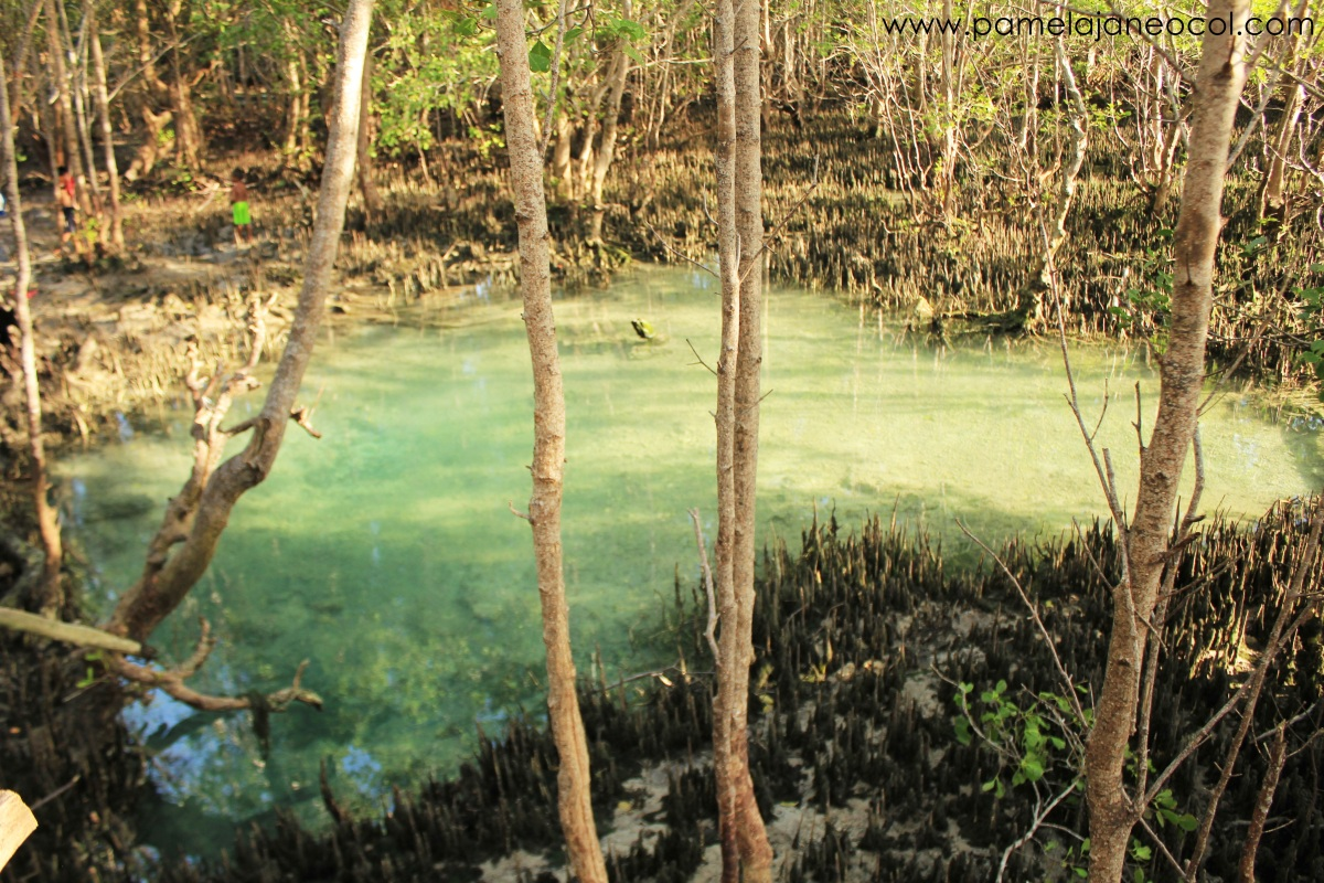 Siquijor hot spring