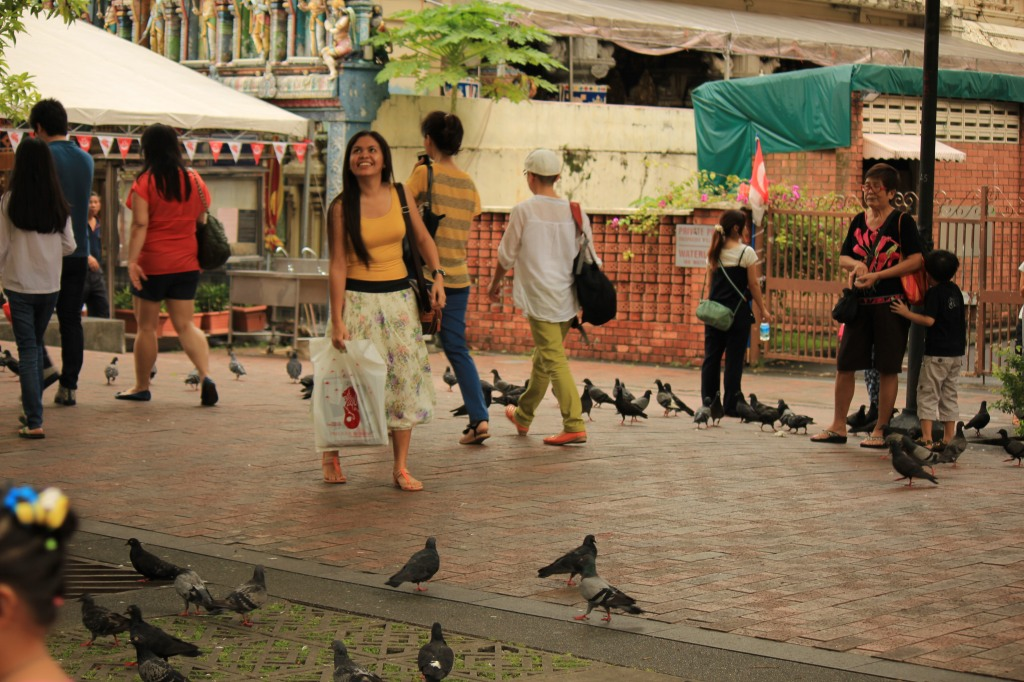 Singapore doves